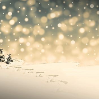 Wir sind im Weihnachtsurlaub!